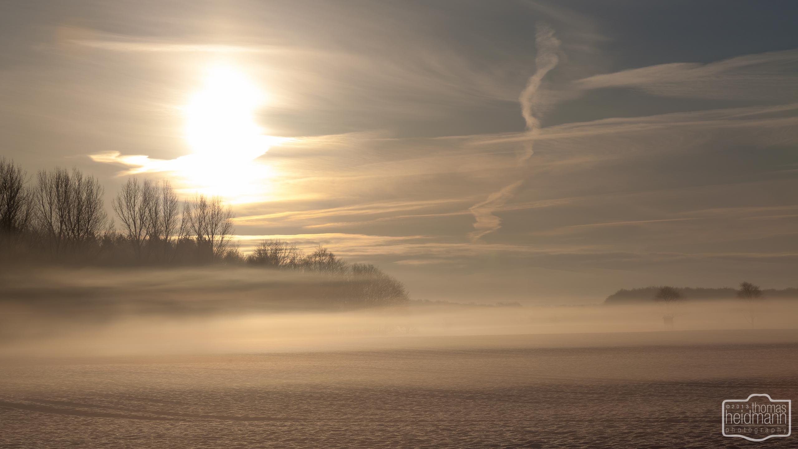 Morgenidylle in Schleswig-Holstein