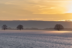 Sonnenuntergang in Borstorf