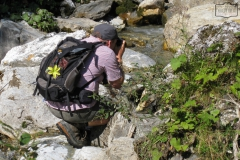 Wanderung zum Tappenkarsee und zur Draugsteinalm über den Gipfelgrat (Karteistörl bis Draugsteintörl in 2145m).