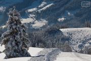 Bergwelt im Schnee