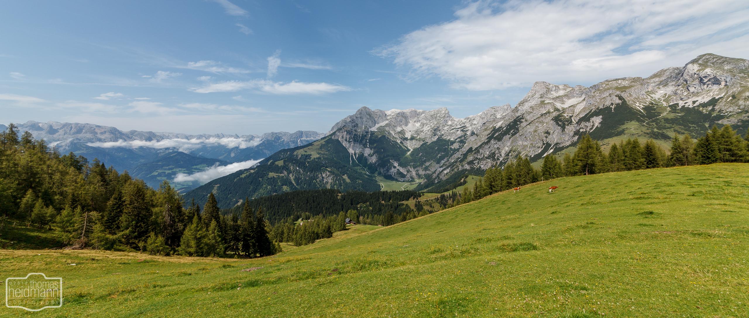 Wanderung an der Bischlingshöhe