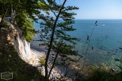 Spaziergang an der Kalkküste auf Rügen