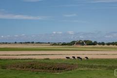 Landschaft auf Nordstrand