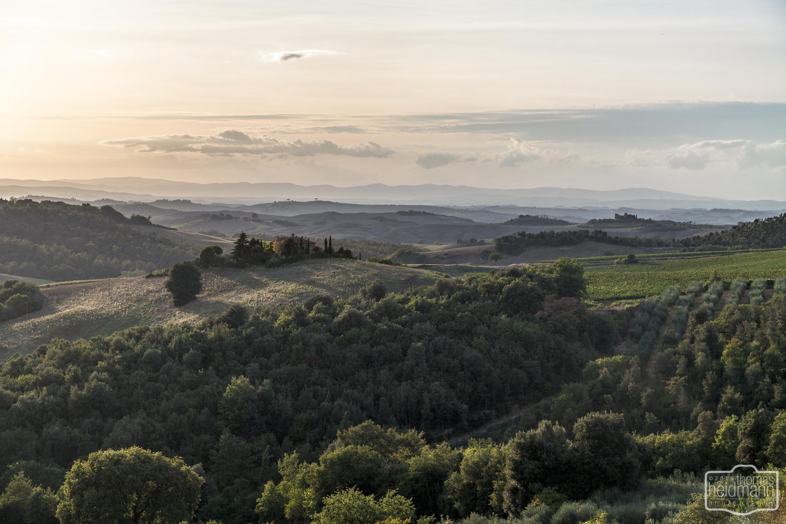 Landschaft bei Trequanda