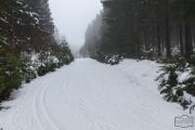 Winterwanderweg bei Braunlage im Harz