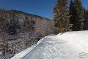 Winterwanderweg in Balderschwang
