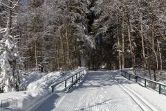 Winterwanderweg & Loipe direkt nebeneinander