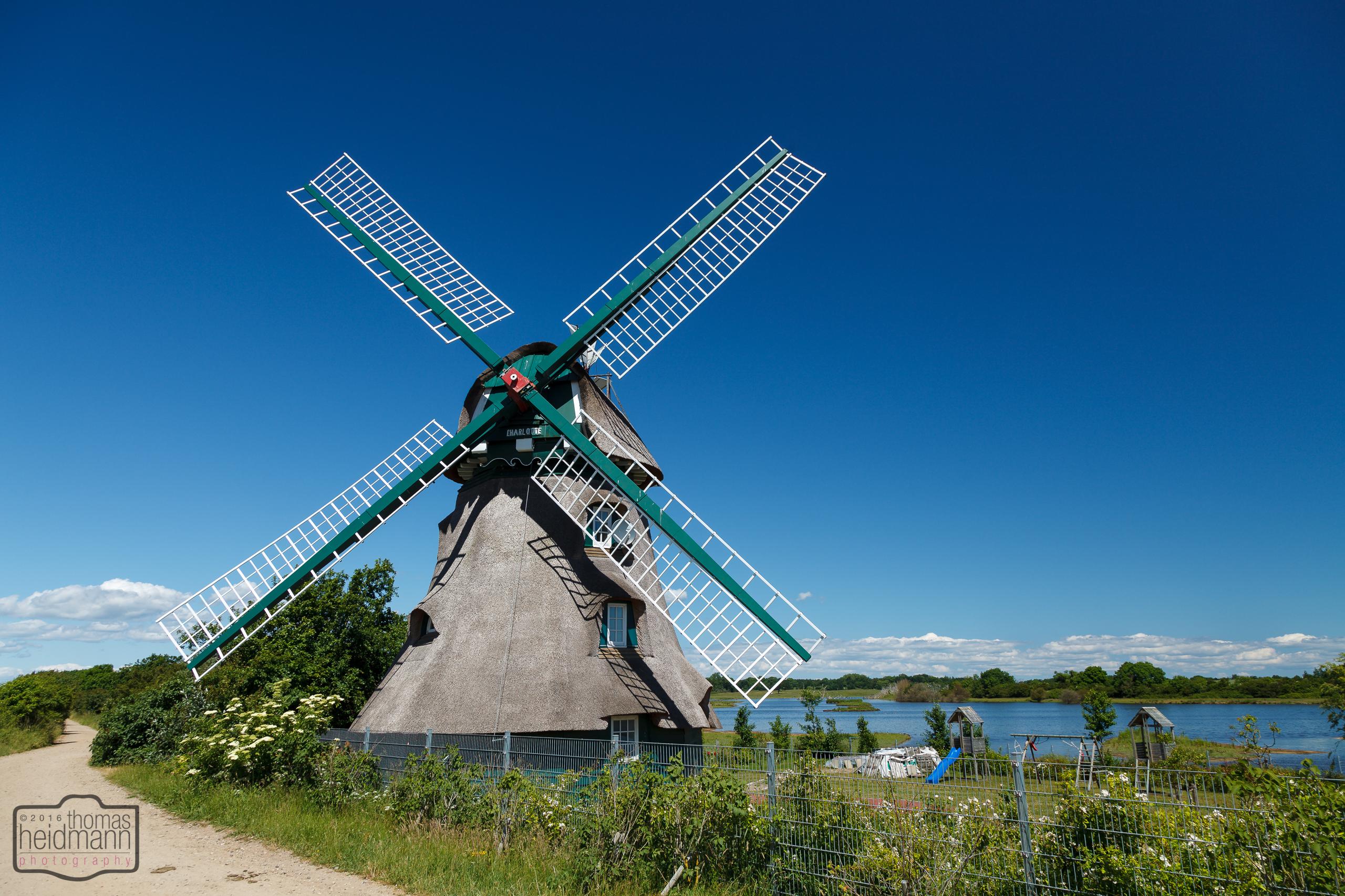 Windmühle Charlotte an der Flensburger Förde
