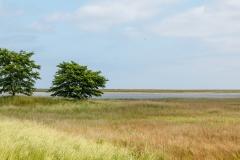 Naturschutzgebiet an der Schleimündung/Ostsee
