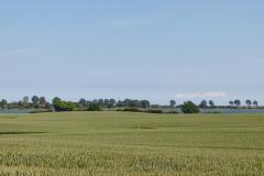 Blick auf Maasholm