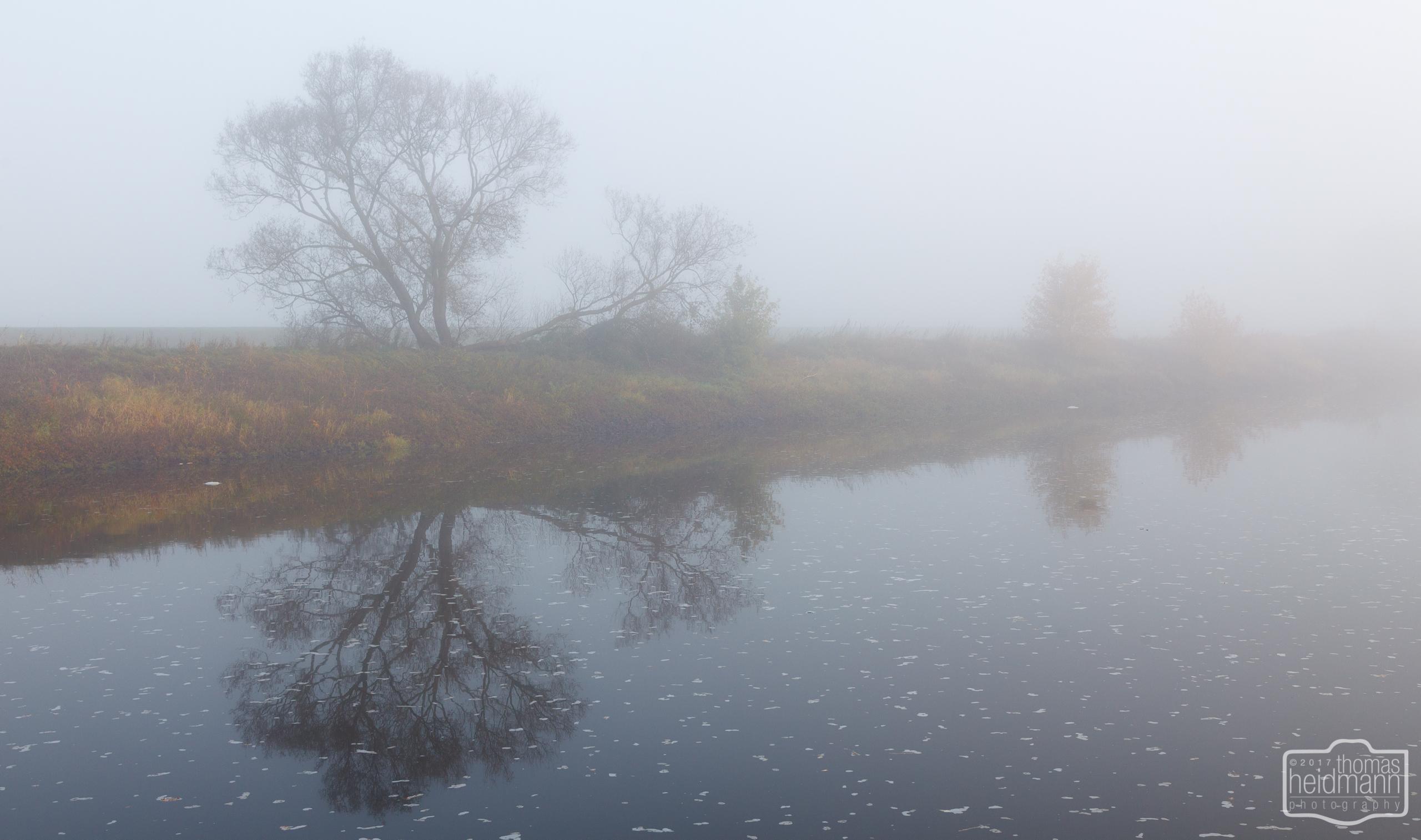 Nebliger Morgen auf dem Stellplatz Dömitz an der Elbe
