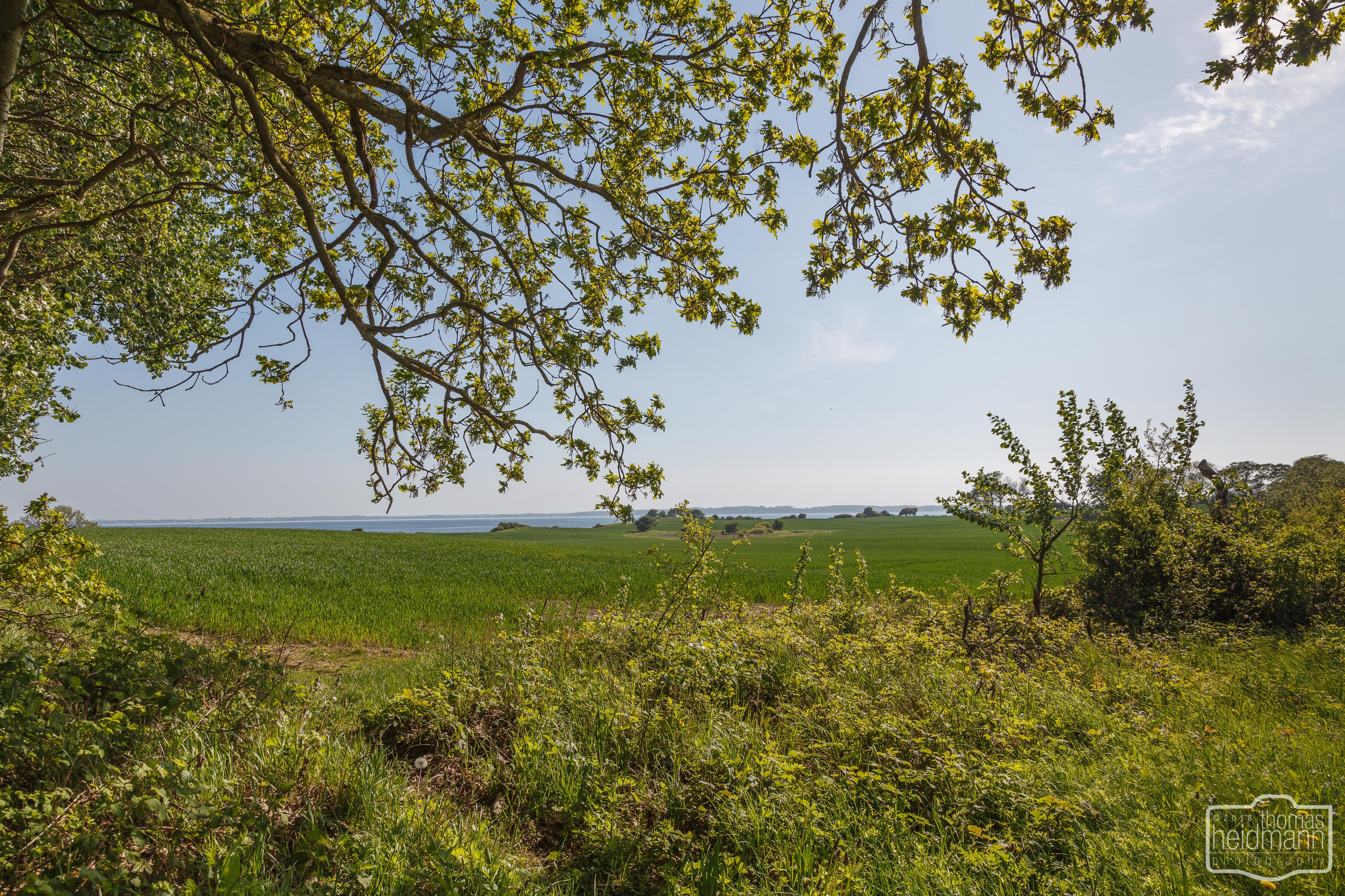 Blick auf die Kerteminder Bucht auf der Insel Fyn