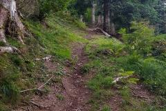 Wanderung zum Hexenwasser in Söll