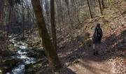 Heinrich-Heine-Weg an der Ilse entlang