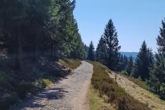 Steiniger Wanderweg am Ekerstausee