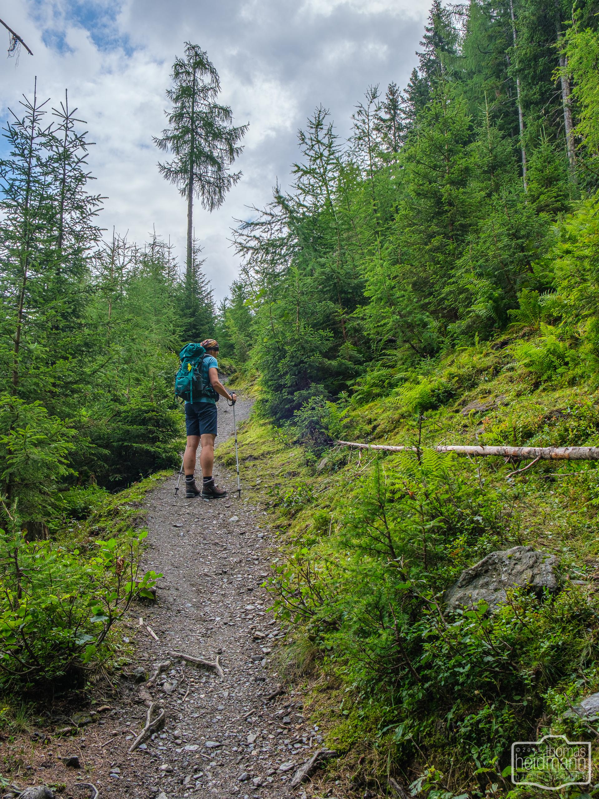 Wanderung zur Hirschgrubenalm und Modereggalm - Steiler Wanderweg