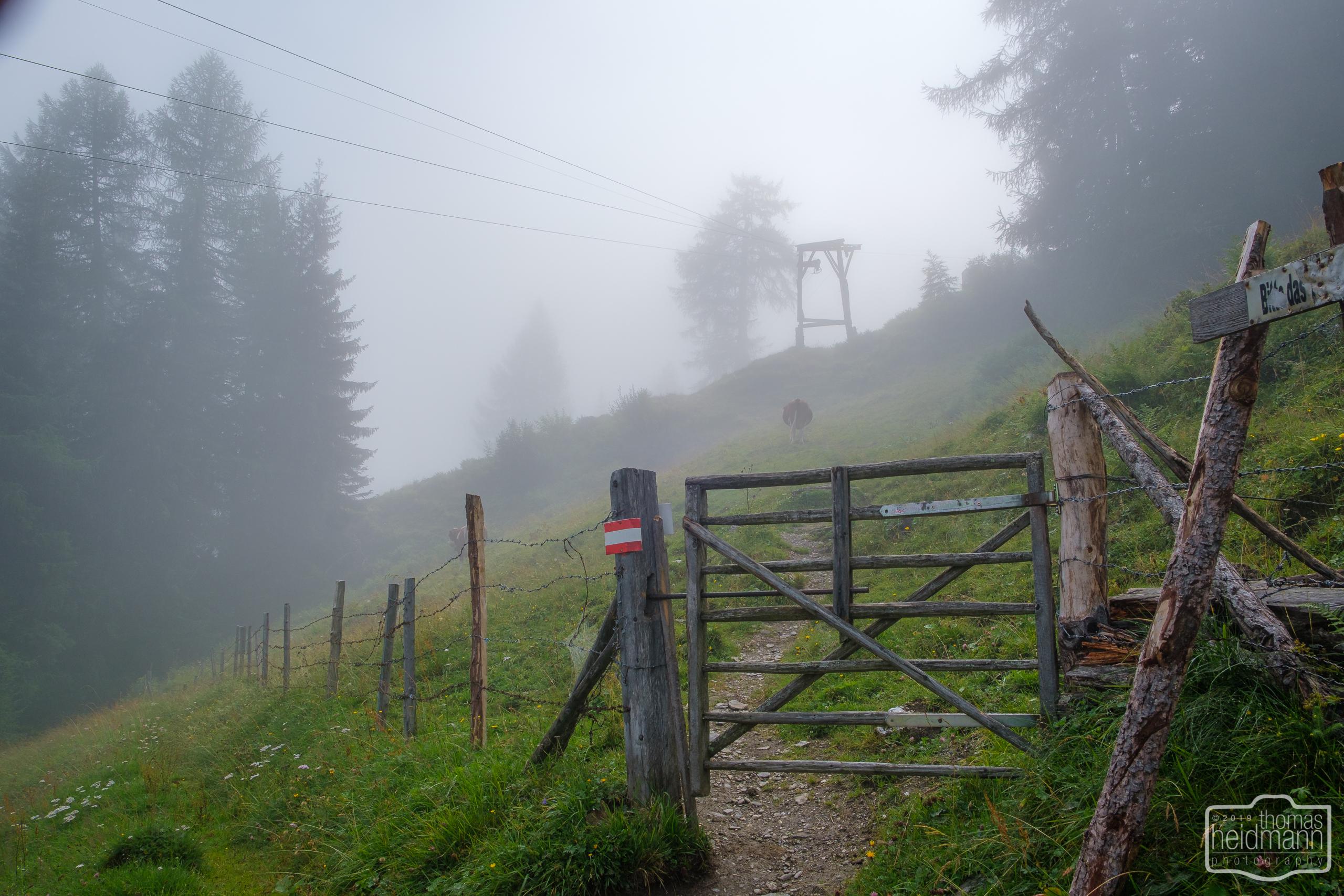 Gratwanderung - Wanderweg im Nebel