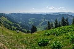 Wanderung auf dem Grat der Nagelfluhkette - Der Wanderweg auf dem Grat