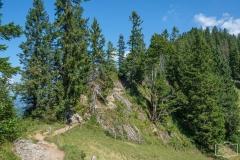 Wanderung auf dem Grat der Nagelfluhkette - Anspruchsvoller Wanderweg