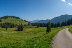 Radtour in Oberstaufen - Schöne Landschaft