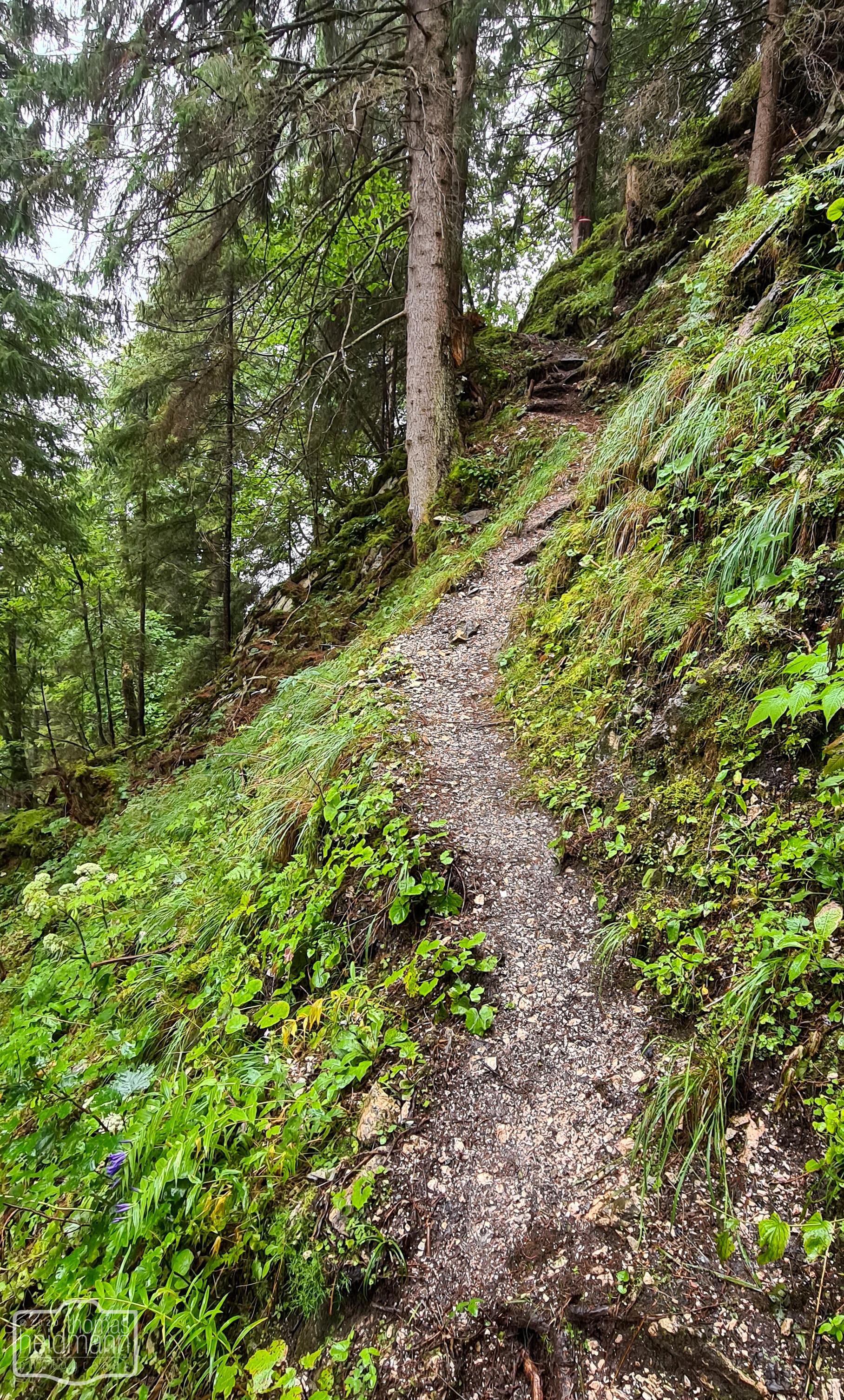 Extrem steiler Anstieg zur Ruine Friedburg