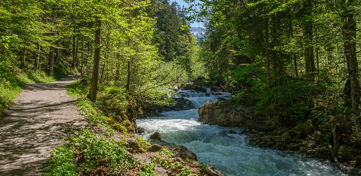 Reise: Sommer-Rundreise 1 – Alllgäu & Hessen