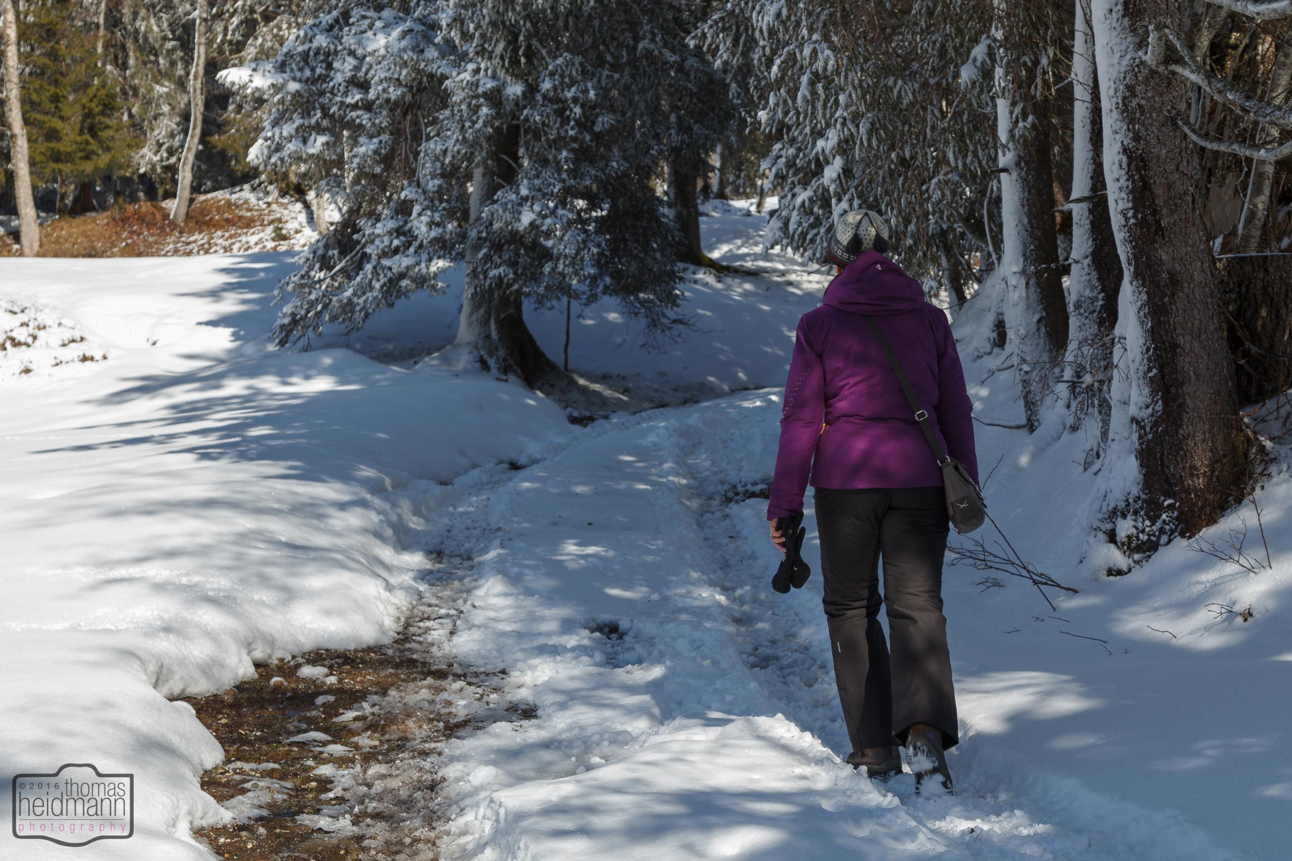 Winterwandern in Balderschwang