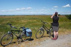 Blick auf die dänische Küste vom Naturschutzgebiet Geltinger Birk aus gesehen