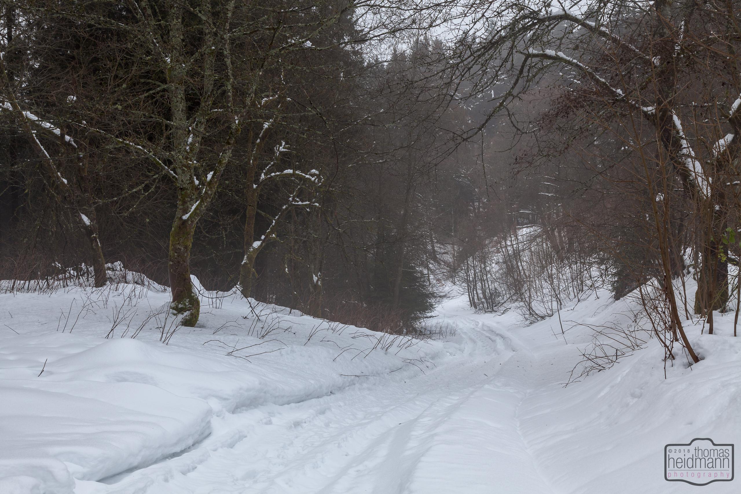 Wanderung in Winterberg OT Neuastenberg