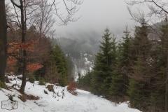Wanderung auf dem kahlem Asten im Nebel