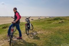 Radtour durch die Dünen auf Rømø