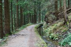 Wanderung in Altenau