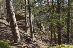Taubenbergklippen