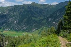 Wanderung zur Hirschgrubenalm und Modereggalm - Weg ins Tal von der Modereggalm