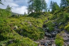 Gratwanderung - Steiler Wanderweg