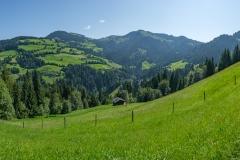 Wanderung auf die Hohe Salve - Panoramablick