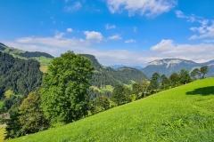 Berglandschaft in Söll