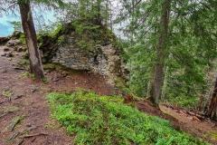 Ruine Friedburg