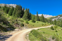 auf dem steilen Weg zur Rotmoosalm