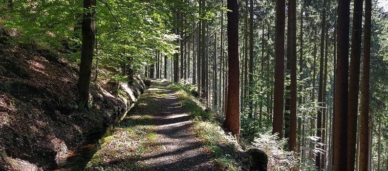 Reise: Altenau im Harz